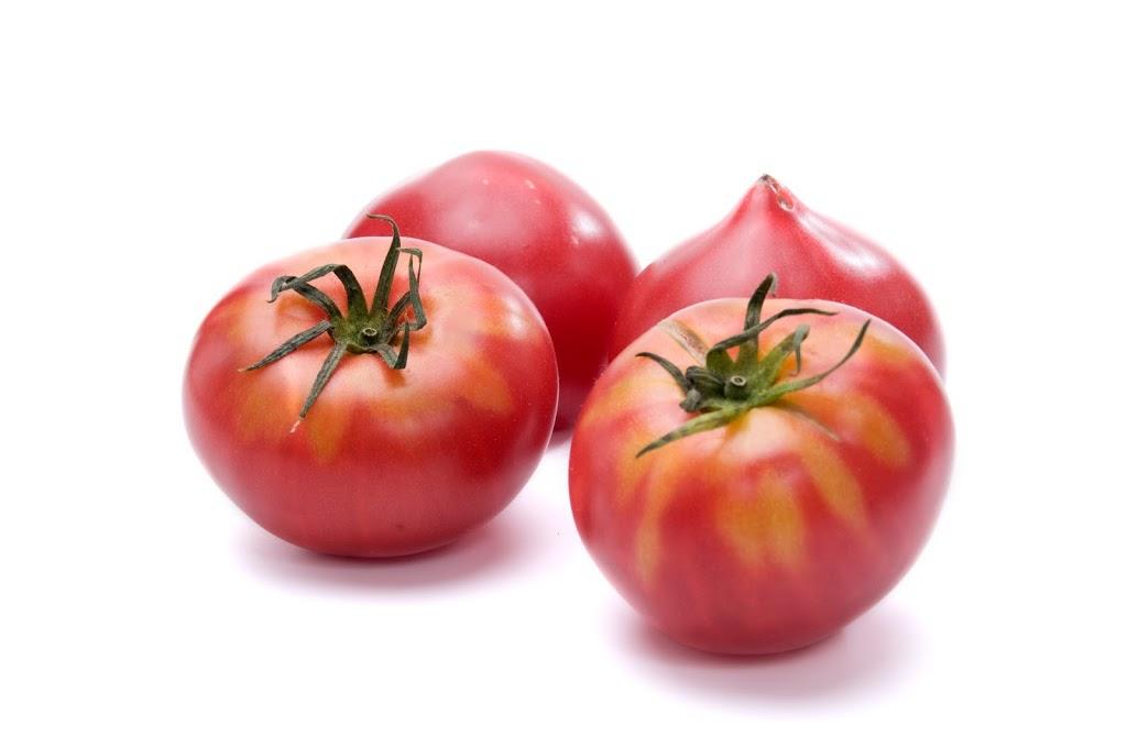 トマトの栽培に適した気候
