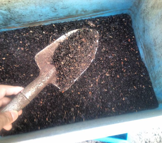 今日も堆肥が完成したので、ふるいにかけています。20リットルほどの生ゴミは見事に消えて土に化けましたしばらく熟成させて、堆肥に活用しましょうかね#家庭菜園 #コンポスト