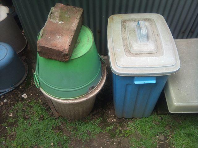堆肥作りに活躍しているお二人です。右側が生ごみを日々どんどん投入する容器でここに2週間投入し続けます。その後左の容器に移動後圧縮した上に土で多い空気を遮断、二週間かけて発酵させていきます。ここまでが第一工程で最初の生ごみ投入から一ヶ月はここで過ごすことになります。#家庭菜園 #堆肥作り