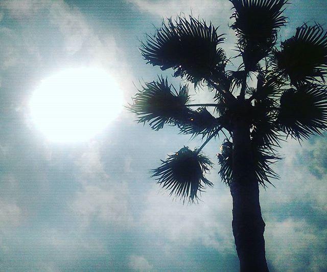 海から無事帰還しました。ひと通り泳いでクタクタです。我がスマホは月末間際に速度規制に。ナンテコッタイ。#海 #松江