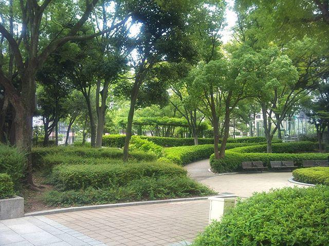 昼休憩にはよく行く三宮の東遊園地です。三宮では珍しく緑が多いので気分転換にはちょうどいいのです。結構広いのでお弁当を食べる人やスポーツをする人などがたくさんいます#神戸 #東遊園地