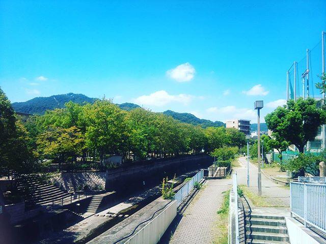 外出先にて撮影。新湊川という場所です。元々湊川という川があったのですが、埋め立てて新しく川を作った歴史があるらしいですね。