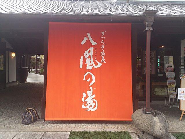 和歌山へ旅行へ行った際の宿泊先がこちらです。価格的にも手頃でかつ快適な非常にいい旅館でした(^^)
