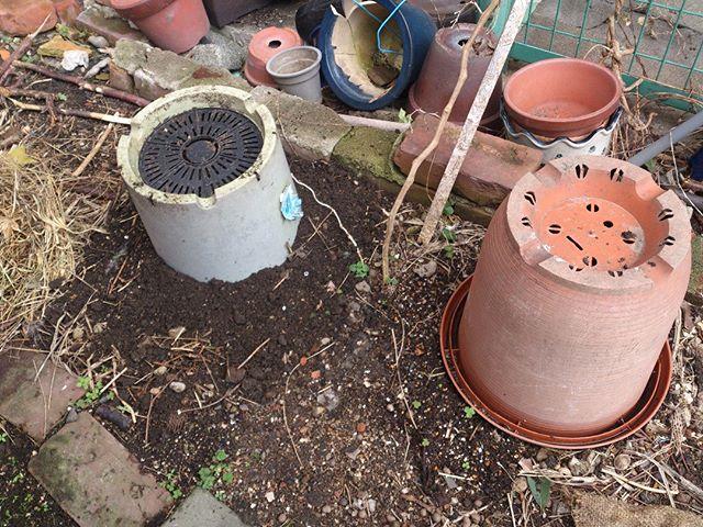 こちらが手抜き堆肥作りのプランターです。プランター中に土と生ごみをサンドイッチ状にしたものを入れておき、春になるまで放置しておくだけです。約4ヶ月ありますのでそこそこ分解してくれることを期待しています。これからはこの逆さプランターが定期的に増えていきます。