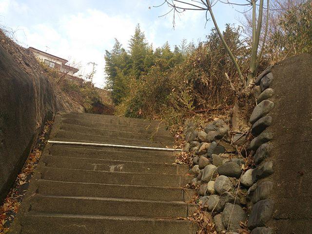 家に向かう上り坂の途中にて。ちなみにこれは裏道に当たる場所です。しかしこうしてみると山以外のなにものでもないな。。