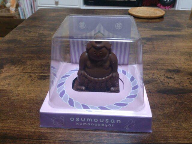 今年の妻からのバレンタインチョコレートはこちらです。今年は手作りと購入したものの2種類がありお相撲さんは購入した方。それにしてもお相撲さんチョコレートなんて初めて見た。こんなのあるんだ
